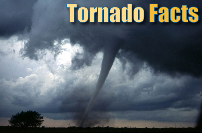 Tornado Facts For Kids Header
