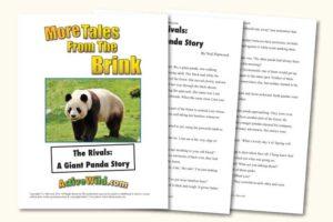 Endangered Animal Stories Giant Panda