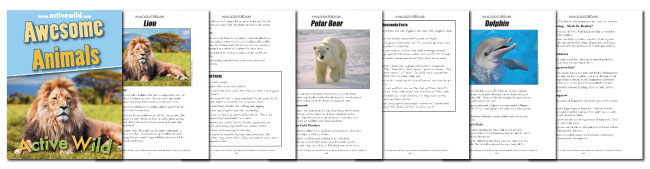 Awesome Animals Book Pages