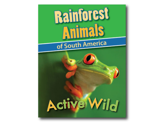 Rainforest Animals Printable Facts Pack