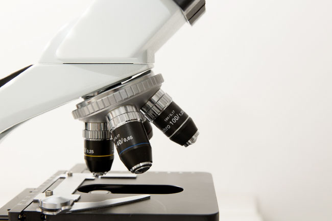 Scientific Method Microscope