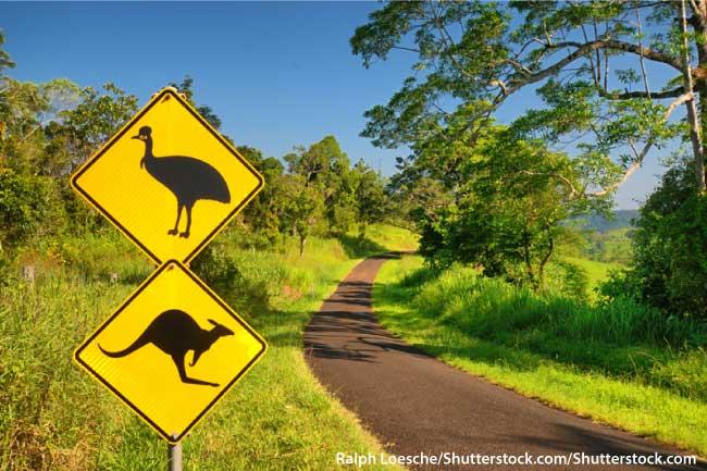 Cassowary Road Sign