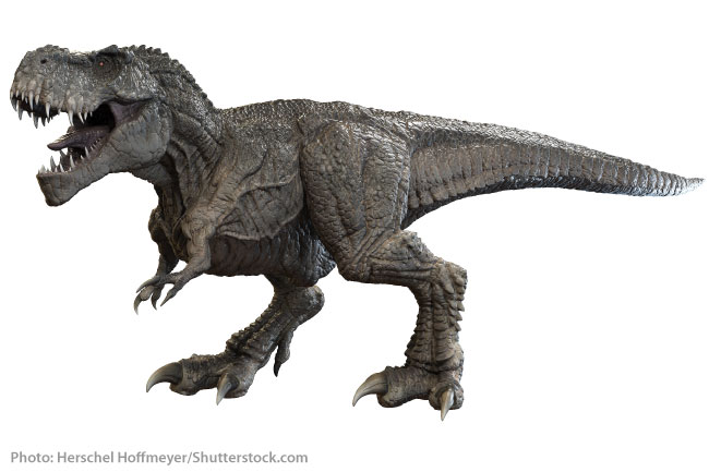Tyrannosaurus Rex one of the very last dinosaurs to have walked the Earth