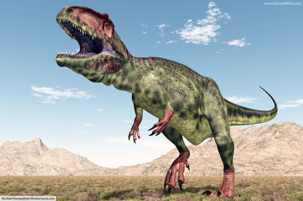 Giganotosaurus Carcharodontosaurid