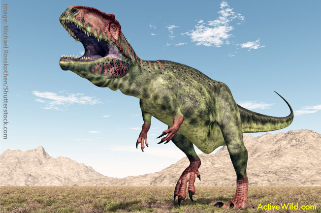 Giganotosaurus List of Dinosaurs fa764dda7b9e