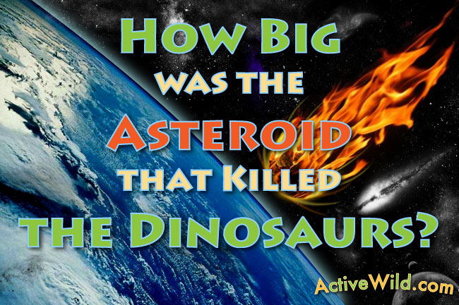 How big was the asteroid that killed the dinosaurs