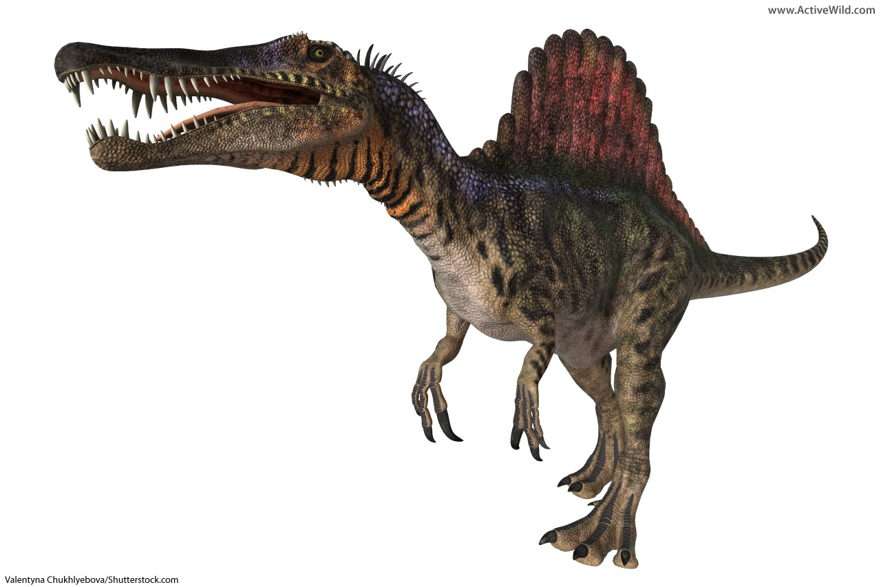 list of dinosaurs dinosaur names with pictures information