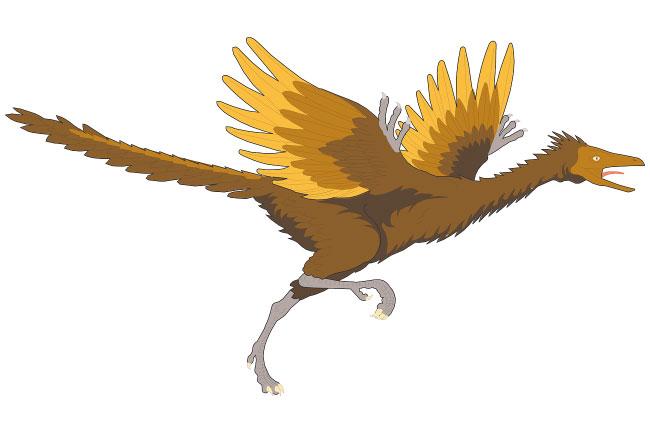 Archaeopteryx cartoon