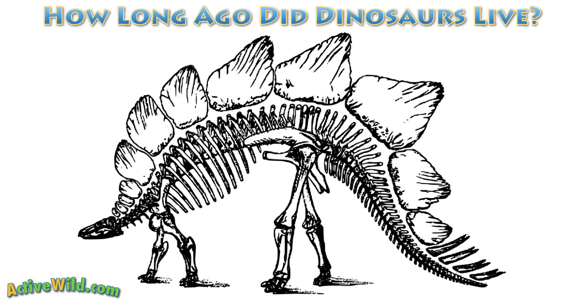 How Long Ago Did Dinosaurs Live - The Life u0026 Death Of The ...