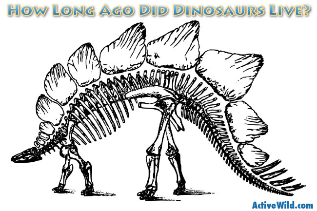 How Long Ago Did Dinosaurs Live