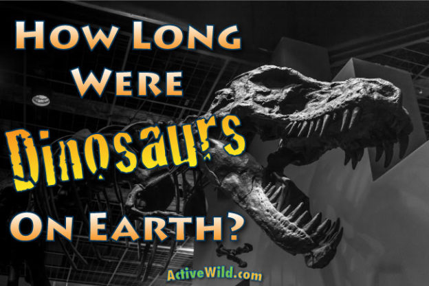How Long Were Dinosaurs On Earth