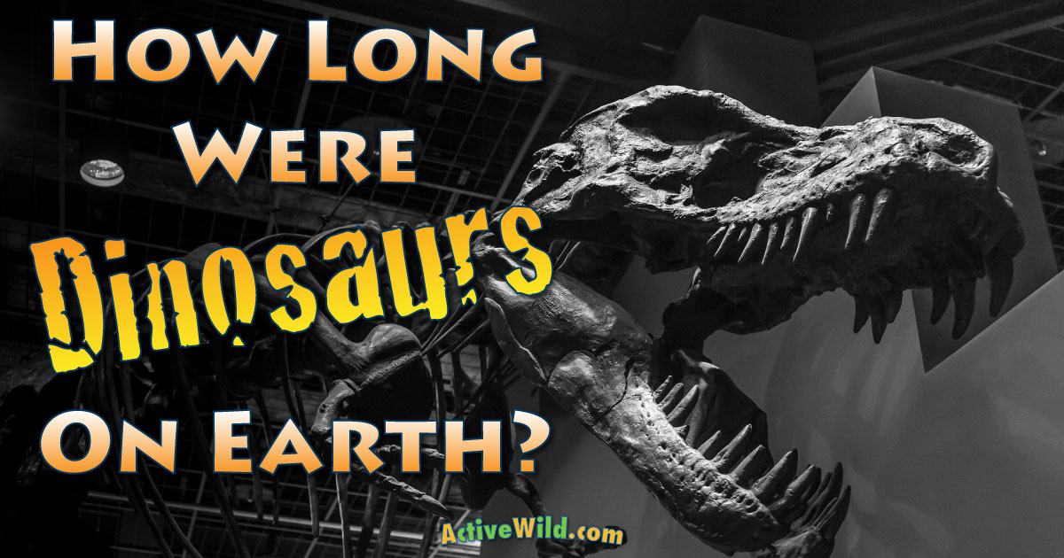 How Long Were Dinosaurs On Earth A Brief History Of The