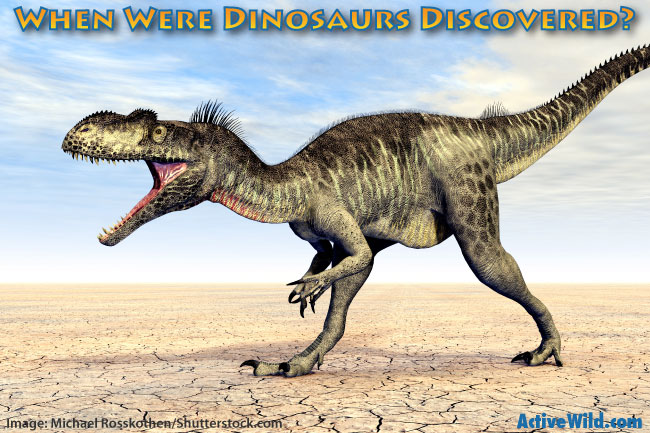 When Were Dinosaurs Discovered