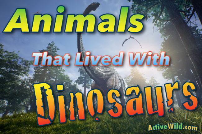 animals that lived with dinosaurs