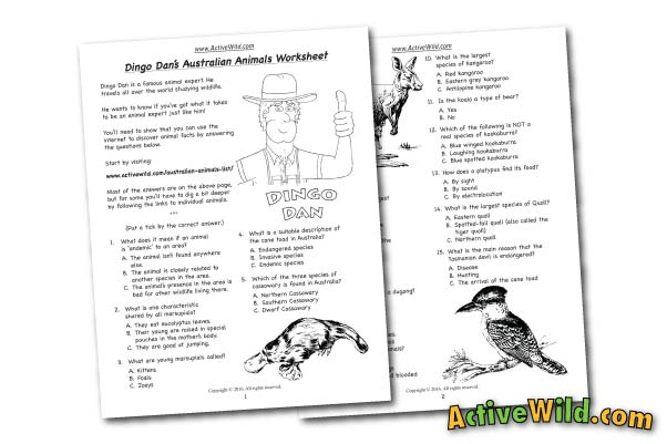 Australian Animals Free Printable Worksheet