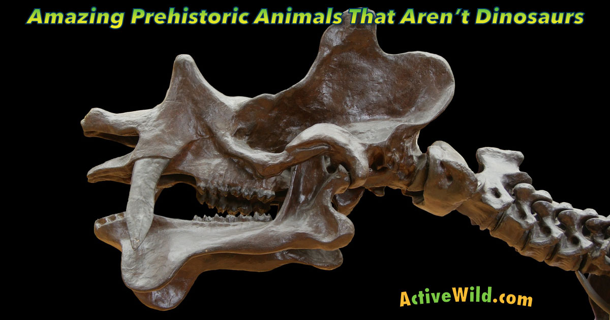 List Of Prehistoric Animals That Are Not Dinosaurs, With ...