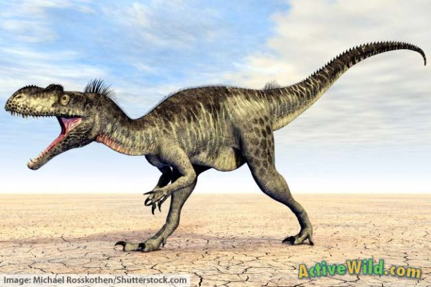 Megalosaurus Facts for Kids