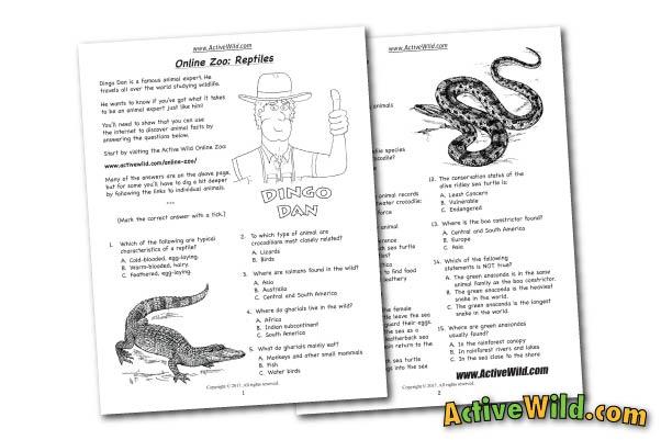 Online Zoo Worksheet Reptiles