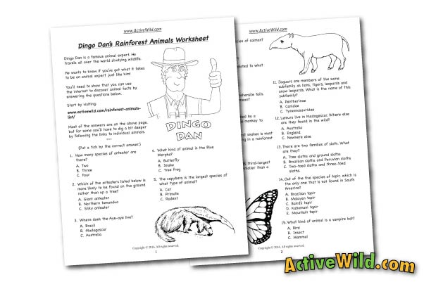 Rainforest Animals Free Printable Worksheet