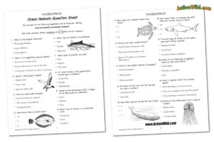 Ocean animals worksheet
