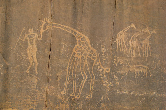 Cave Paintings In The Sahara Desert