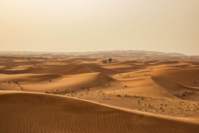 Sahara Desert Scenery