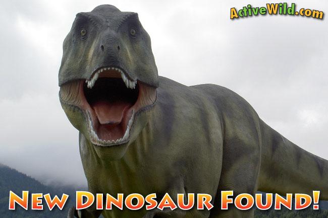 Daspletosaurus Horneri Facts New Dinosaur Found