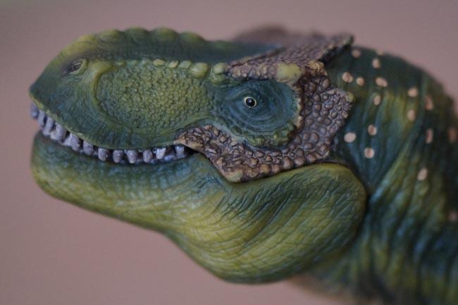 Tyrannosaur Face