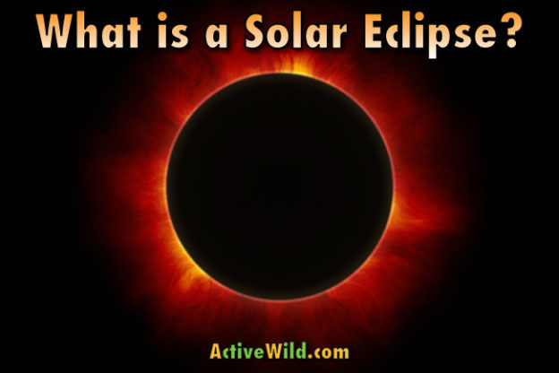 What Is A Solar Eclipse Complete Guide With Pictures