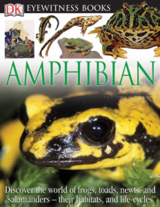 Eyewitness Books: Amphibian
