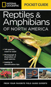 National Geographic Pocket Guide to Reptiles and Amphibians of North America book cover