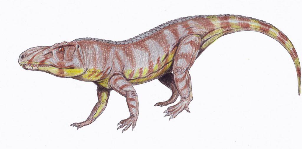 Luperosuchus