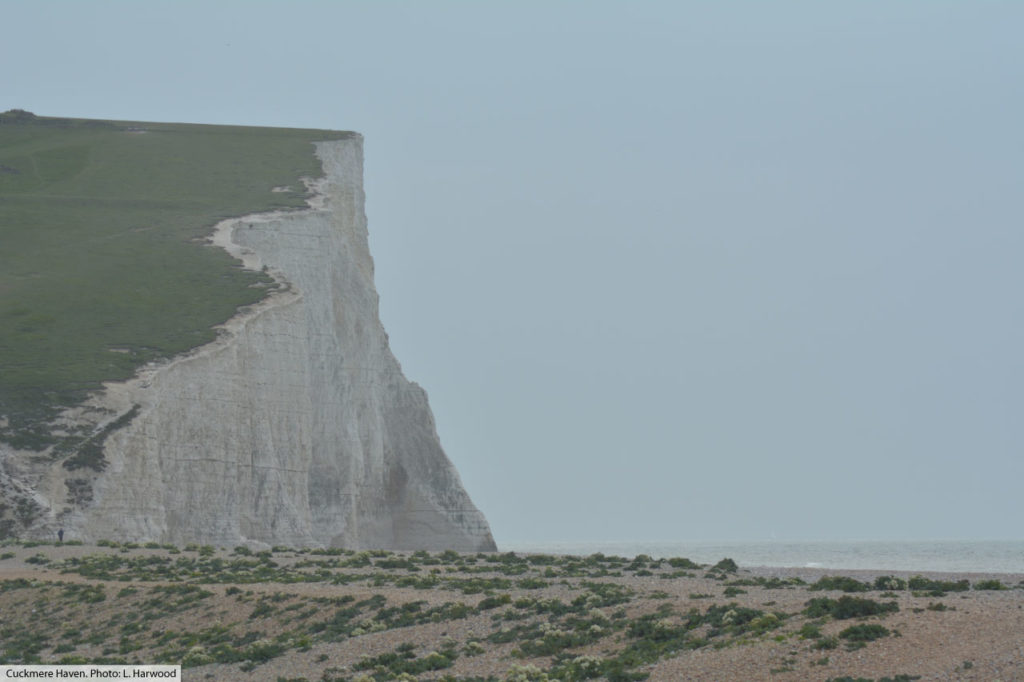 cretaceous chalk cliff