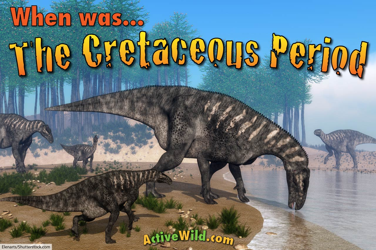 when was the cretaceous period