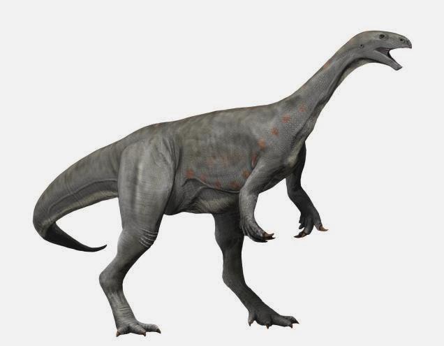 Asylosaurus
