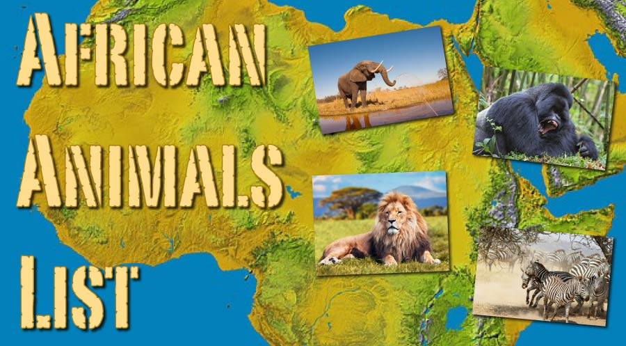 African Animals List With Pictures, Facts, Information