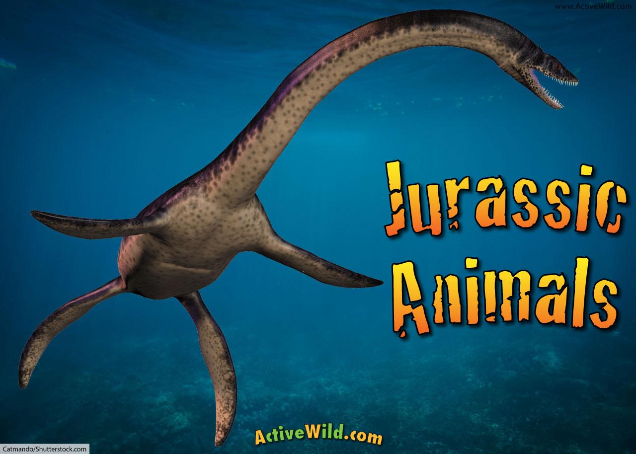 jurassic animals