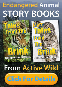 Endangered Animal Story Books advert