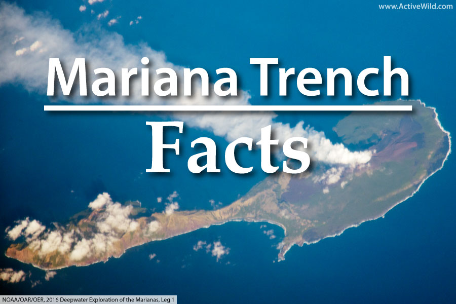 Mariana Trench Facts