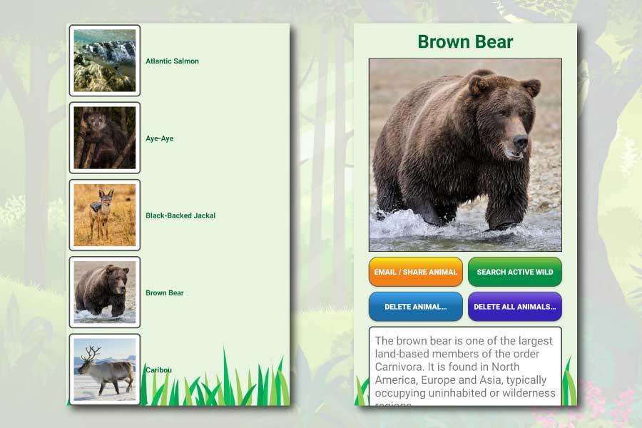 My Spirit Animal Quiz Android App Screenshots