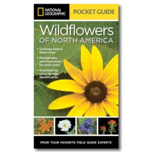 National Geographic Pocket Guide to Wildflowers of North America Cover