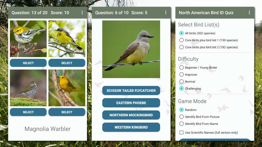 North American Bird ID Quiz App screenshots