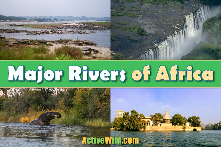 Major Rivers Of Africa