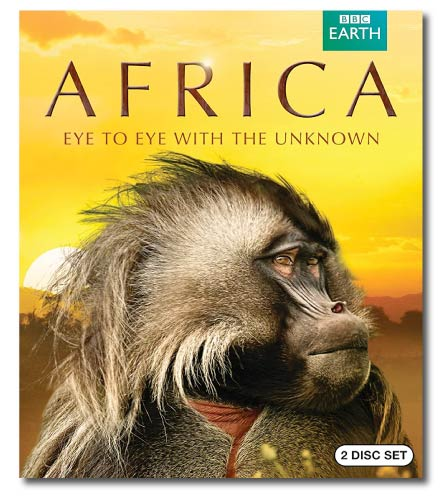 Africa Wildlife Documentary