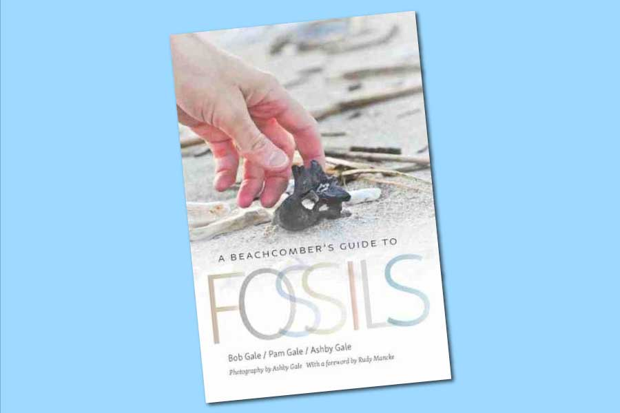 Beachcombers Guide to Fossils Book