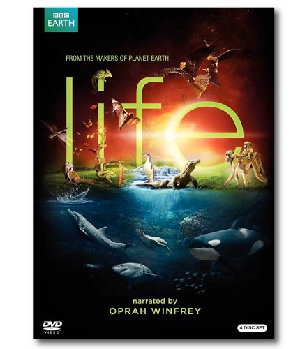 Life Nature Documentary