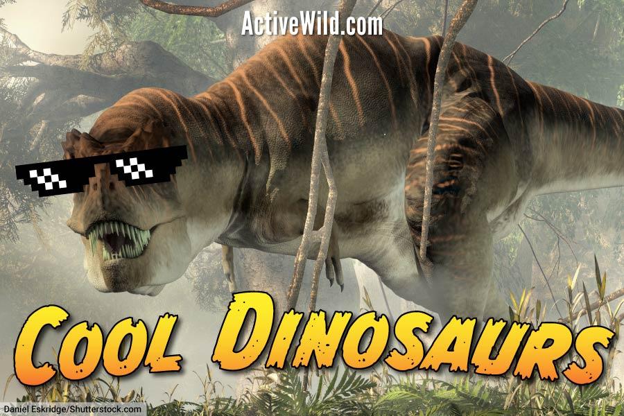 Cool Dinosaurs
