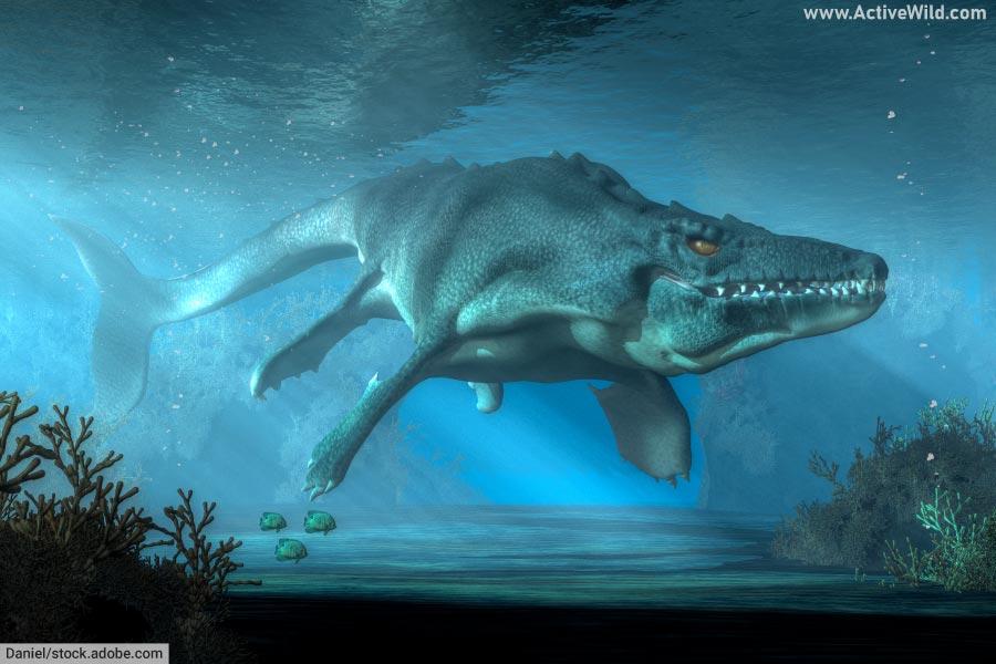 Mosasaurus swimming