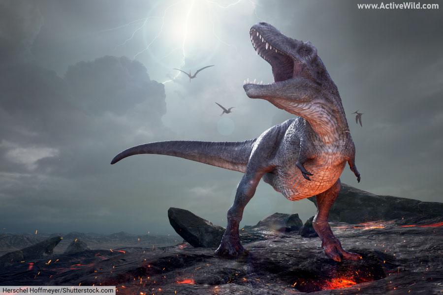 Tyrannosaurus rex and pterosaurs