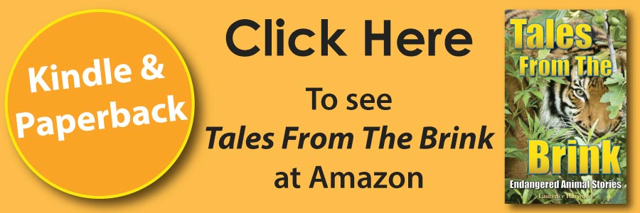 Tales From The Brink Book ad